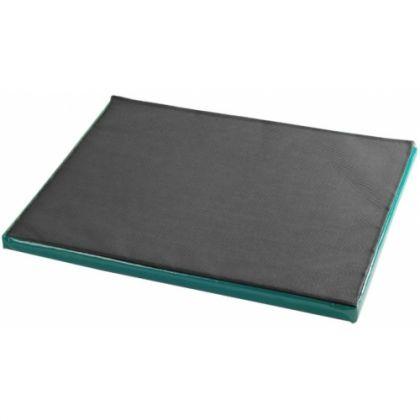 Dezinfekcinis kilimėlis 45x60x4cm